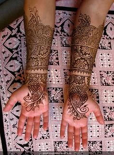 Bridal palms