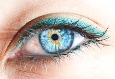 Jazmine's Eye 4:1 Supermacro (Fly to Water) Tags: blue iris macro eye closeup close human alienbee supermacro flickraward flickrdiamond flickridol nikonflickraward doubledragonaward flickraward5
