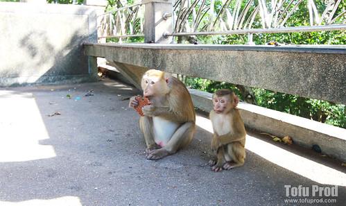 2012 Bangkok Thailand Trip 1 Day 10