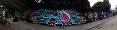 Zade1 (COLOR IMPOSIBLE CREW) Tags: chile west color graffiti crew painters dems yono 2012 marlis zade imposible quilpue fros eynor