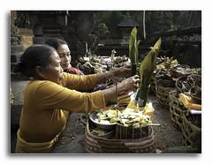 zenubud bali 5786DXP (Zenubud) Tags: bali art canon indonesia handicraft asia handmade asie import tiff indonesie ubud export handwerk g12 villaforrentbali zenubud villaalouerbali locationvillabaliubud
