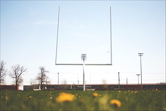 Football ( CHRISTIAN ) Tags: sport football nikon focus dof montral dandelion pdc pissenlit mtlunguessed d80 gwim