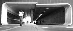 Cuyperspassage, Amsterdam (tommyferraz) Tags: station amsterdam central tunnel centraal cuyperspassage