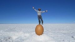- 2016-05-06 at 21-37-26 + balancing on an egg