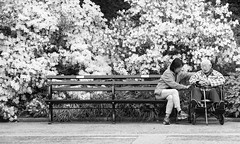 Tender Loving Care (Joe Josephs: 2,650,890 views - thank you) Tags: nyc people blackandwhite love centralpark manhattan photojournalism elderly age care oldage centralparknewyork blackandwhitephotography joejosephs joejosephsphotography