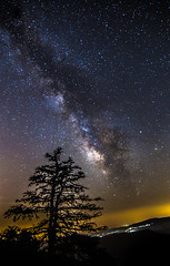 Milky Way rises over the tree (Vagelis Pikoulas) Tags: sky mountain mountains tree night canon way stars landscape star spring nightscape space may tokina mount greece galaxy universe milky milkyway 6d 2016 vilia kithaironas 1628mm kithairwnas