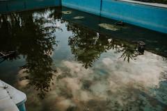 (Trompeat) Tags: reflection pool 35mm canon sigma piscina malaga reflejos swimingpool sigmaart