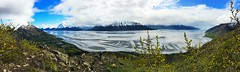 Pano on Bird Ridge Trail (forrest.michele) Tags: travel blue trees sky cloud mountain mountains tree bird nature water alaska clouds outdoors arm hiking cook hike ridge trail inlet turnagain