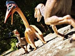 attacking the aerie (Chris Blakeley) Tags: seattle toy dinosaur velociraptor pterosaur hipstamatic seattletoyphotosafari
