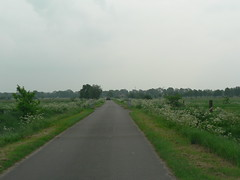 on the road - touring East Frisia (achatphoenix) Tags: road roadtrip backroad byroad eastfrisia enroute spring street strase ostfriesland