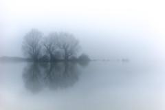 St Ives flooded (glidergoth) Tags: fog flood stives cambridgeshire