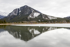 Sulphur Mountain reflected in Third Vermillion Lake near Banff (Jim 03) Tags: park terrain mountain lake canada mountains ice landscapes rocky jim falls reflected alpine national alberta bow glaciers third fields banff sulphur forests coniferous vermillion 1885 2016 jimhoffman jhoffman jim03 wwwflickrcomphotosjhoffman2013 wwwjimahoffmancom