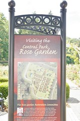 11807333_10153099667842076_8505553952232425810_o (jmac33208) Tags: park new york roses rose garden central schenectady