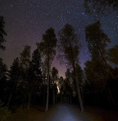 Starwalker (MilaMai) Tags: road longexposure nightphotography autumn trees red panorama black fall nature silhouette night forest finland dark way walking stars landscape outdoors colorful alone darkness path space autumnleaves astrophotography planets dreamy birch nightsky finnish newmoon magical spruce carlights starry atmospheric forestpath maisema northernlights auroraborealis redleaves nightwalk starsky milkyway underthestars milamai