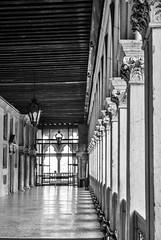 Galeras de museo. Luces y sombras. (Leandro Fridman) Tags: bw white black byn blanco luces nikon italia negro venecia sombras columnas d60 techos faroles galera