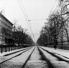 000378630003 (qweq0) Tags: bw white black 120 tlr architecture analog tracks tram lubitel warsaw medium format warszawa tramwaj 166b nowowiejska