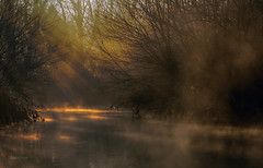 Ray-tracing (Robyn Hooz (away)) Tags: light sun water fog canon river eos dawn haze ray alba trace sole nebbia acqua patches luce channel canale 600d chiazze roncajette terranegra ef70300lis