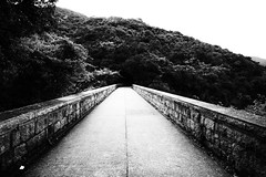 Tai Tam Bridge (ROSS HONG KONG) Tags: leica bridge bw white black hongkong 21mm taitam taitamreservoir f34 m9p