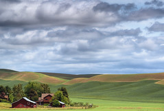 The Ranch (Aaron Reed Photography) Tags: blue light red green clouds barn photography spring waves photographyclass photographers velvet hills workshop stockphotos pacificnorthwest ripples stockimages palouse professionalphotography blackwhitephotography easternwashington palousehills photographyschool fineartphotographs skyphotographs lakephotographs aaronreed naturephotographs abstractphotographs landscapephotographs photographytraining framedartprints sunsetphotographs artphotographs sunrisephotographs aaronreedphotography surrealphotographs redphotographs waterphotographs cityscapephotographs cloudsphotographs duskphotographs reflectionphotographs exposurenorthwest bluephotographs aaronreedphotographer landscapephotographygallery mountainsphotographs orangephotographs pavementphotographs whatislandscapephotography whatisstockphotography aaronreedart aaronreedprints aaronreednature aaronreedaluminumartprints yellowphotographs bridgephotographs buildingsphotographs twilightphotographs roadphotographs aaronreedmetalprints aaronreedacrylicfacemountprints