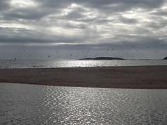 DSCF3032 (Chris Doal) Tags: blanco luz azul mar agua playa arena cielo isla gaviota nube doal chris