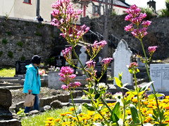 st mary's graves (glasnevinz) Tags: ireland howth dublin saintmaryschurch binnadair