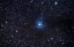NGC 7024 The Iris Nebula V3.1 (Chuck Manges) Tags: iris sky field apt night canon stars ed star space cluster ngc deep apo telescope nebula astrophotography orion astronomy t3 dslr deepspace meade 1100 sct t3i cepheus refractor 102mm deepsky apochromatic 600d lx50 ngc7023 irisnebula st80 dslrastrophotography Astrometrydotnet:status=solved Astrometrydotnet:version=14400 canont3 ed102t startools germanequatorial Astrometrydotnet:id=alpha20120719007578