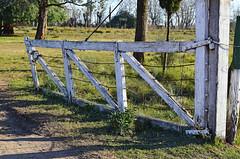 Portada de estacin Plomer (jagar41_ Juan Antonio) Tags: argentina nikon portada plomer d5100 nikond5100