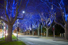 St Kilda Road at Night (Jamie Frith) Tags: night nikon melbourne stkildaroad d800 2470