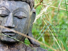 Buddha (LaWendeltreppe) Tags: garden quote buddha