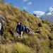 Descending Mardi Himal Trail