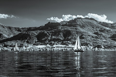 Chiemsee - infrared (Himbeerdoni) Tags: bw white lake black alps reed water germany landscape ir bayern deutschland bavaria see boat blackwhite wasser sailing berge infrared sw alpen landschaft chiemsee schwarz segelboot schilf infrarot weis herreninsel ir72