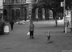 Piazza teatro (juanulagu) Tags: street city trip travel summer sky urban blackandwhite bw italy sun white black architecture italian italia cityscape ct wanderlust sicily catania sicilia
