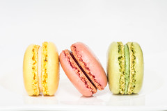 Delicious! [Explored] (Kate H2011) Tags: pink food white green yellow closeup wow indoor explore biscuit whitebackground highkey edible macaroons 2016 ef50mm explored katehighley