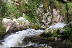 Allerheiligen waterfalls III (tillwe) Tags: green water waterfall whitewater blackforest tillwe allerheiligen oppenau 201605 norschwarzwald hochzeitsfeierjd