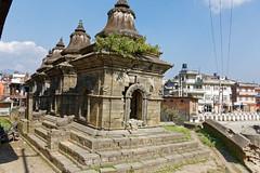 DS1A4173dxo (irishmick.com) Tags: nepal kathmandu 2015 guhyeshwori guhyeshwari bagmati ghat