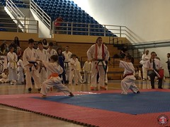 stefanou_15_5_2016_knockdown_22
