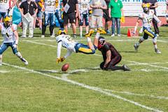 GFL-2016-Panther-9853.jpg (sgh-fotos) Tags: football nfl bowl german panthers sack dsseldorf touchdown defence invaders hildesheim dline fumble gfl amarican quaterback oline interception ofence