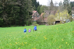 Mühlenwanderweg (chrissie.007) Tags: welzheim remsmurrkreis kaisersbach mühlenwanderweg 20160430