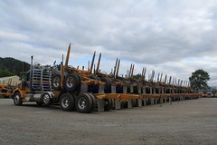 Ireland (32) (RyanP77) Tags: ireland trucking myrtle point oregon logger logging log truck kenworth t800 whitlog whit kw timber trucks fleet