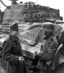A Totenkopf Division grenadier talking with a Hungarian soldier in Budapest, October 1944. The King Tiger is from the schwere Panzer-Abteilung 503