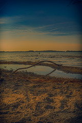 Plner_See (CPhotographyB) Tags: strand germany wasser iso ufer pln