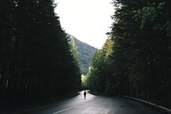 Miles to Go (Alexander Tran   atranphoto.com) Tags: road park sun landscape person montana nps walk going minimal glacier national fujifilm glaciernationalpark xpro2 nps100 atran atranphoto glaciernps goparks atranfoto fujifilmxus