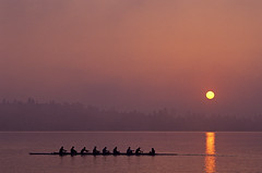 Eight man crew on Union Bay silhouetted at sunrise (Jim Corwin's PhotoStream) Tags: seattle trees inspiration man male men water training sunrise outdoors photography concentration spring athletics exercise character aspiration earlymorning shell silhouettes lifestyle guys row attitude responsibility crew rowing precision effort strength ripples recreation practice watersports inspirational endurance success silhouetted leadership preparation rhythm prepare preparing rower determination confidence synchronicity enthusiasm commitment skill excellence competitive practicing synchronize dependable succeed successful teamsports stamina dependability insync leisureactivity montlakecut sportsandrecreation oarshittingwater eightmancrewparkbench