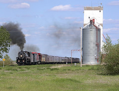 PenseSK 2011-06-10 1611CST (Hoopy2342) Tags: railroad train elevator rail railway steam sk saskatchewan cp pense 464 2816