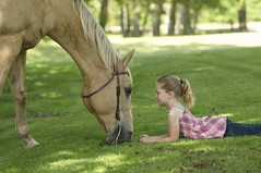 DSC_3067 (Debbie Prediger Photography) Tags: horses horse playing canada green love girl grass closeup youth children fun outside photography eyes child emotion lawn young images alberta blonde getty debbie facetoface truelove greengrass cadogan prediger kidsbeingkids