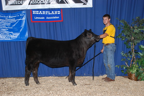 Res Champ B&O LF Female
