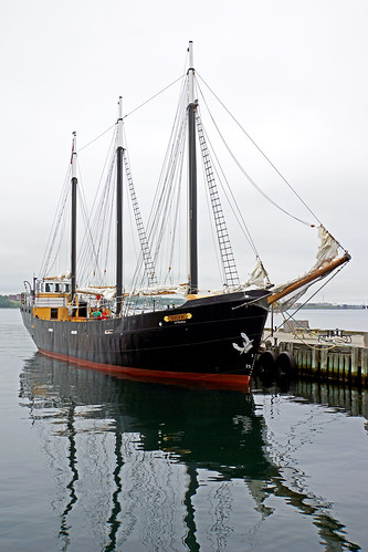 canada three ship novascotia sony free tall dennis tallship jarvis halifax masts silva iamcanadian freepicture dennisjarvis archer10 dennisgjarvis nex7 18200diiiivc