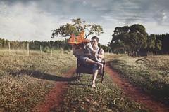 Hot News (Matt Antonio) Tags: road red sky field forest canon project matt fire 50mm newspaper gate flickr cu vermelho pasto estrada pasture campo jornal conceptual armchair fogo floresta poltrona noticia conceitual porteira 52weeks theteleidoscope