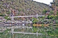 DSC_3033 (zeusch) Tags: bridge tasmania gorge launceston cataractgorge firstbasin launcestonbasin launcestoncataractgorge