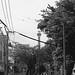FM2_Planar_Yokohama_20120630_04